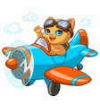 kitty pilot cartoon of kitten vector image vector image