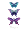 Set of decorative butterflies vector image