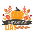 thanksgiving day holiday greeting pumpkin and dry vector image vector image
