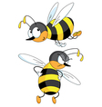 two bees vector image