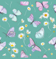 daisy flowers and butterfly background vector image vector image
