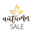 Autumn sale hand written inscription vector image vector image