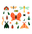 cartoon bugs garden insects and plant leave vector image