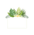 exotic tropical leaves banner rainforest foliage vector image vector image