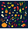 Fresh healthy farm fruits and vegetables icons vector image vector image
