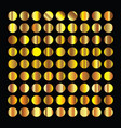 golden circles collection gold background texture vector image