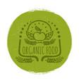 grunge organic food label or banner design vector image