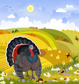 lovely turkey in autumn sunny day happy vector image vector image