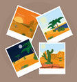 pictures of the desert over cork board vector image