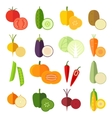Set of fresh healthy vegetables made in flat style vector image vector image
