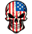 american flag painted on skull vector image