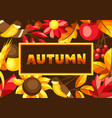 autumn background with seasonal leaves and items vector image vector image