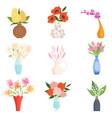 beautiful garden flowers in ceramic vases set vector image vector image