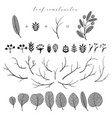 big set of branch and leaf fall spring vector image