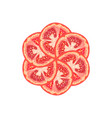 decorative round from tomato slice vector image vector image