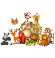 many animals on white background vector image vector image