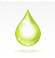olive oil drop realistic vector image