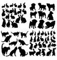 set animal icons in circle cat dog rabbit vector image