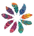 Set of abstract boho feathers on a white vector image vector image