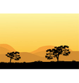 Silhouettes of trees at the noon vector image vector image