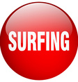 surfing red round gel isolated push button vector image vector image