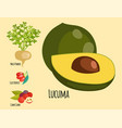 vegetarian superfood healthy vegetable eco food vector image vector image