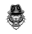 a tiger in hat vector image vector image