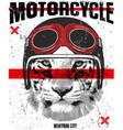 animal tee vintage graphic design vector image vector image