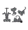 Grey cats collection vector image vector image