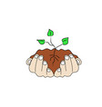 human hands hold soil with a green sprout vector image vector image