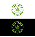 medical organic cannabis vector image vector image