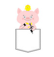 pig face head in pocket chicken bird tulip vector image vector image