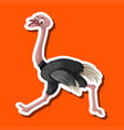 an ostrich on sticker template vector image vector image