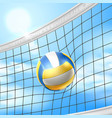 realistic beach volley ball in net blue sky vector image vector image