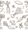 root food sketch seamless pattern celery and vector image vector image