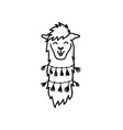 isolated outline cartoon baby llama vector image vector image