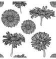 seamless monochrome chamomile pattern vector image vector image