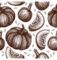 seamless pattern with hand drawn pumpkins vector image vector image