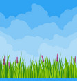 spring meadow cloudscape vector image