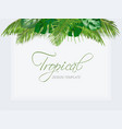 summer tropical background with exotic palm leaves vector image vector image