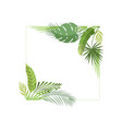 tropical foliage border with space for your text vector image vector image