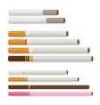 realistic cigarette set vector image
