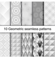 10 Geometric grey seamless patterns vector image vector image