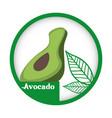avocado fresh healthy label vector image vector image