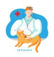 cat in veterinary office flat