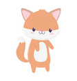 cute fox animal cartoon isolated icon vector image