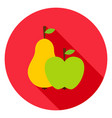 fruits circle icon vector image