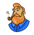 smoking a pipe vector image vector image