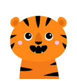 tiger roaring yawing open mouth fang cute cartoon vector image