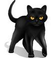 Black Cat Realistic vector image